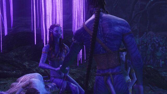 File:Avatar br 2190 20100627 1563734722.jpg