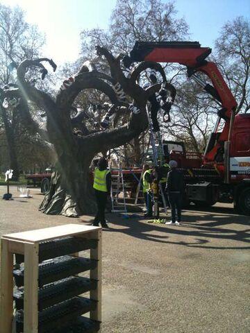 File:Avatar-1-event-gbr-tree-14.jpg