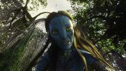 Avatar br 1545 20100520 1639431409