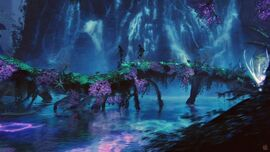 Bioluminescece