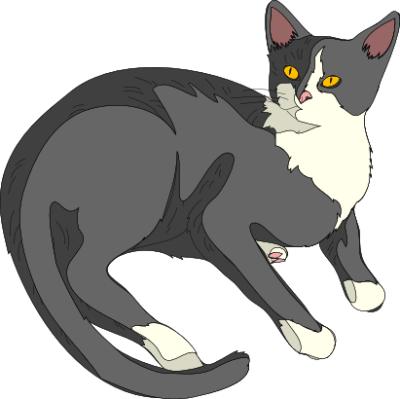 File:Cat 4.png