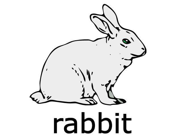 File:Rabbit.png
