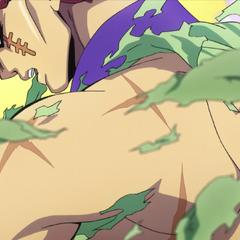 Toyohiro's physique.