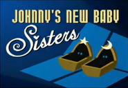 2009-11-09 - Episode 401a - Johnnys New Baby Sisters