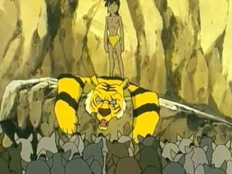 Mowgli's Annoucement