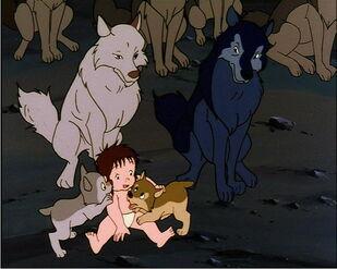 Alexander, Luri, Mowgli, Akru and Sura