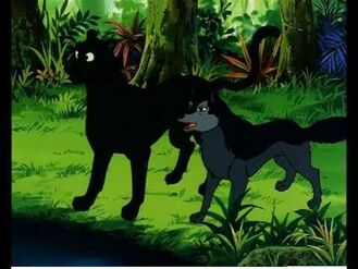 Alexander and Bagheera