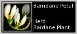 Bardane petal quick short