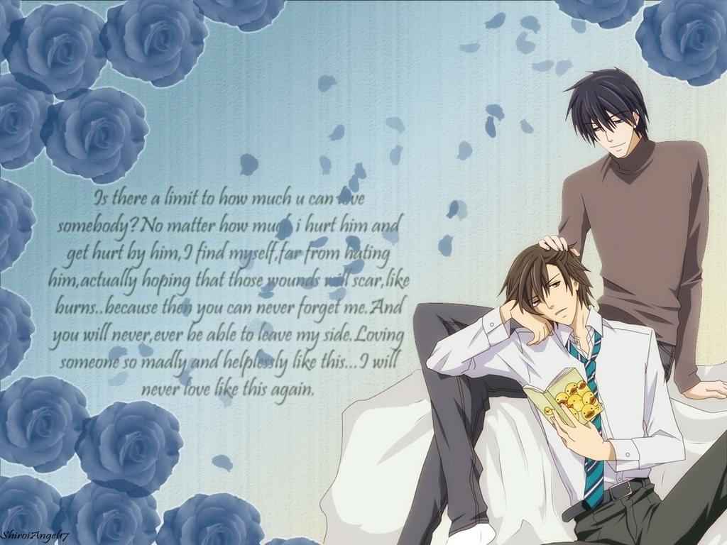 Junjou Romantica Wallpaper Junjou Egoist Love