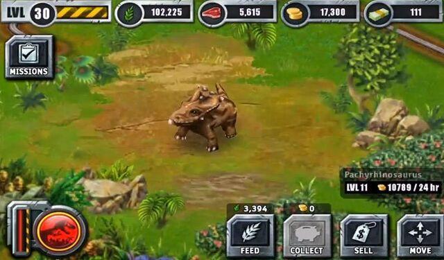 File:Pachirinosaurusbuilder.JPG