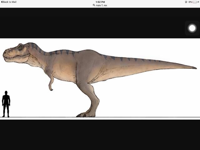 File:Tyrannosaur Girl .png