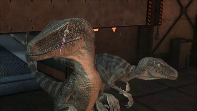 File:Scarred-raptor-leader-jptg 1.jpg