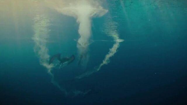 File:Pteranodon-underwater.jpg