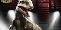 Indominus rex/Builder