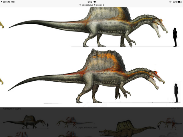 File:The new Spinosaurus .png