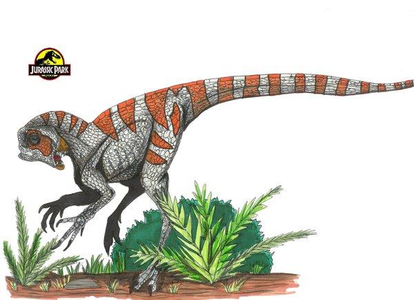 File:JP Heterodontosaurus by hellraptor.jpg