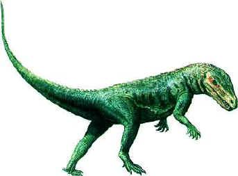 File:Marasuchus.jpg
