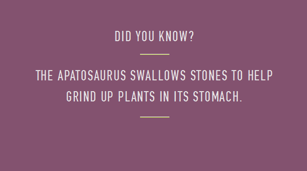 File:Apatosaur swallows stones.png