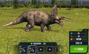 Triceratops Base
