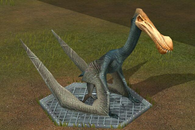 File:Tropeogopterus (0) (Name meaning Keel wing).jpg