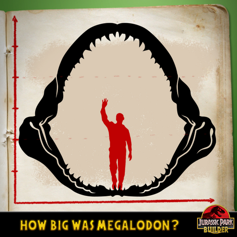 File:JPB Megalodon quiz 1.png