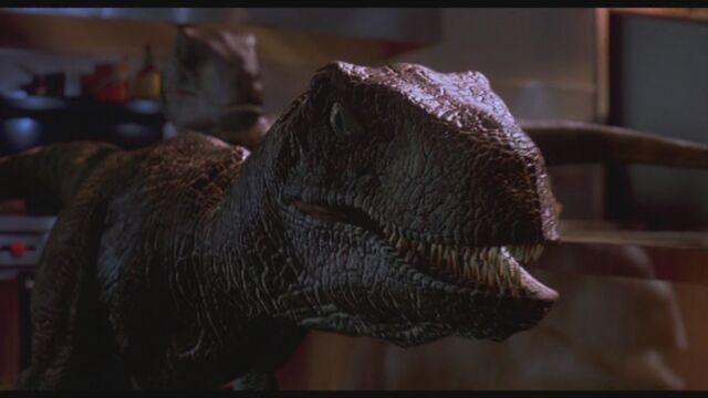 File:SB-Velociraptor-R jpg 630x1200 upscale q85.jpg