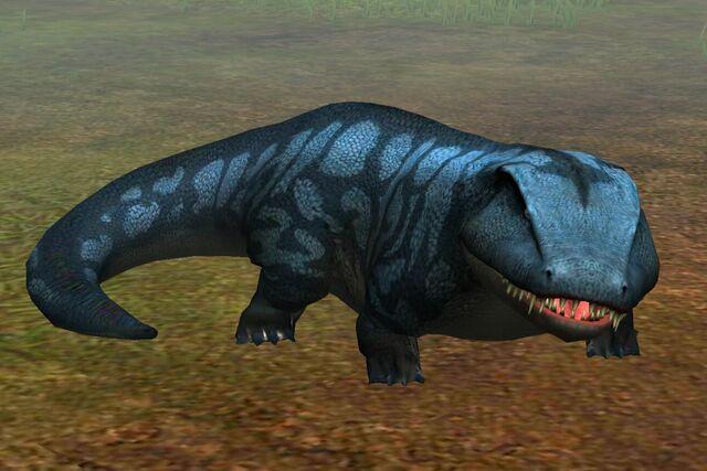 File:Labyrinthodontia (23).jpg