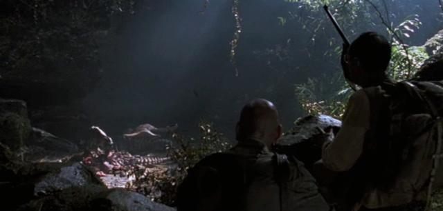 File:Rex-nest.png