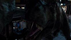T. rex vs I. rex02