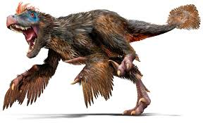 File:Velociraptor feathers.jpg