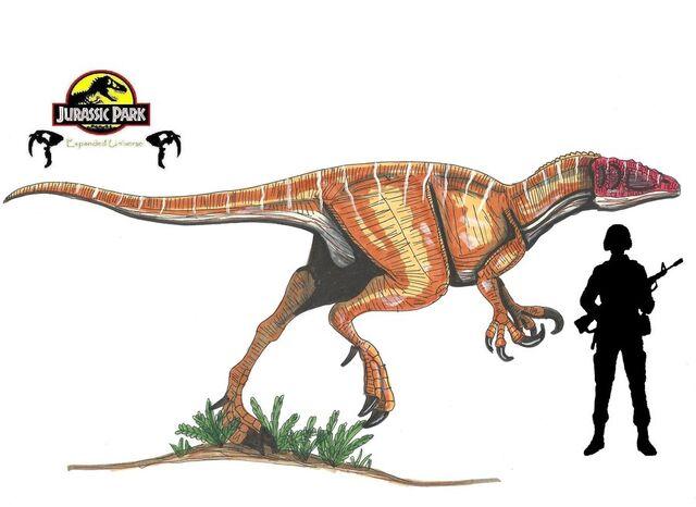 File:Jurassic park australovenator by hellraptor-d2xj8ed.jpg