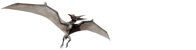 File:Pteranodon-info-graphic.png
