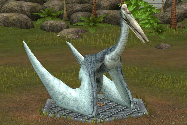 File:Quetzalcoatlus (82).jpg