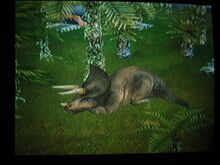 Triceratops sleeping