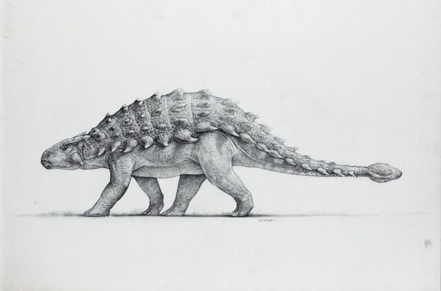 File:Artwork-anklyosaurus.jpg
