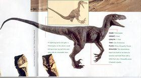 Velociraptor art galery 3.jpg