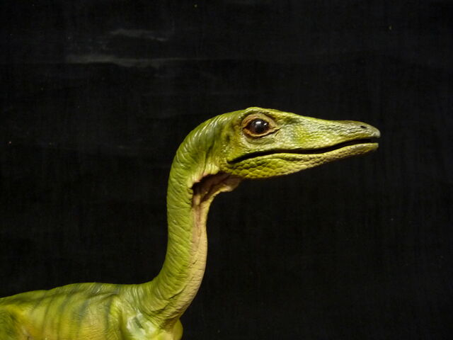 File:Jp compsognathus by baryonyx walkeri-d5uw5fg.jpg