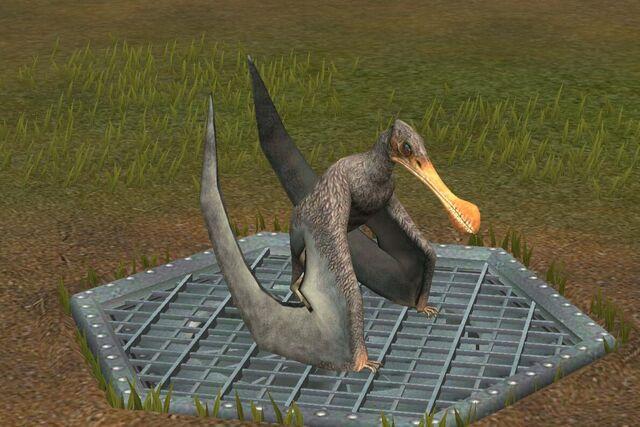 File:Tropeognathus (20).jpg