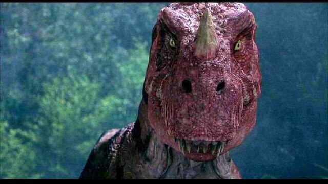 Datei:Ceratosaurus1.jpg
