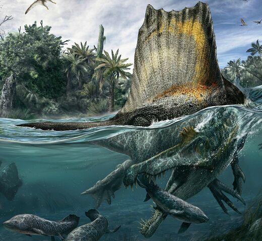 File:Spinosaurus-restoration.jpg