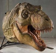 Profiles-in-history-jurassic-park-t-rex-model-x425