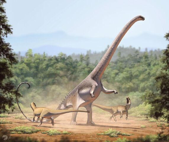 File:Barosaurus lentus1.jpg