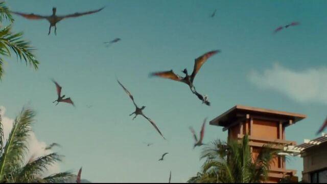 File:Pteranodon hot potato.jpg