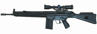 Heckler and Koch HK 91
