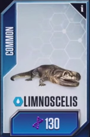 File:Limnoscelis.jpg