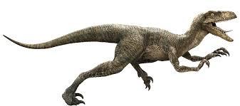 File:Echoraptor.jpg