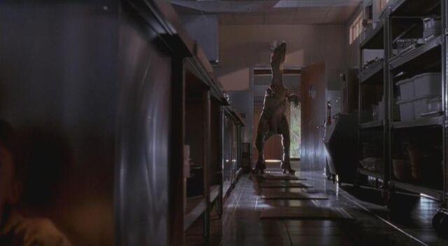 File:Velociraptor 2.JPG