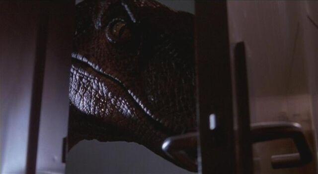 File:Velociraptor 1.JPG