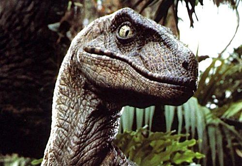 File:141 velociraptor.jpg