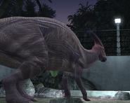 Parasaur4